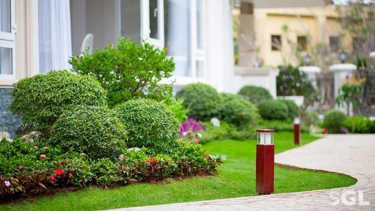 Nên sử dụng các loại cây phù hợp với khí hậu tại khu vực mà bạn sinh sống. Điều này giúp giảm bớt công chăm sóc và duy trì dáng vẻ của cây lâu hơn
