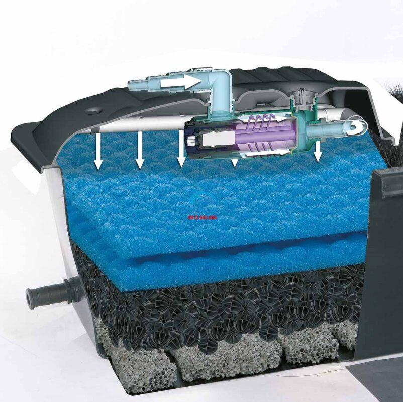 Mặt cắt hệ thống lọc sinh học và cơ chế hoạt động của hệ thống lọc sinh học cho hồ cá ngoài trời