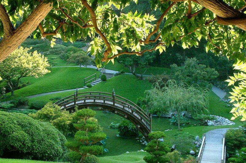 Vườn dạo mát - người thăm quan dễ dàng ngắm toàn bộ cảnh đẹp xung quanh của khu vườn