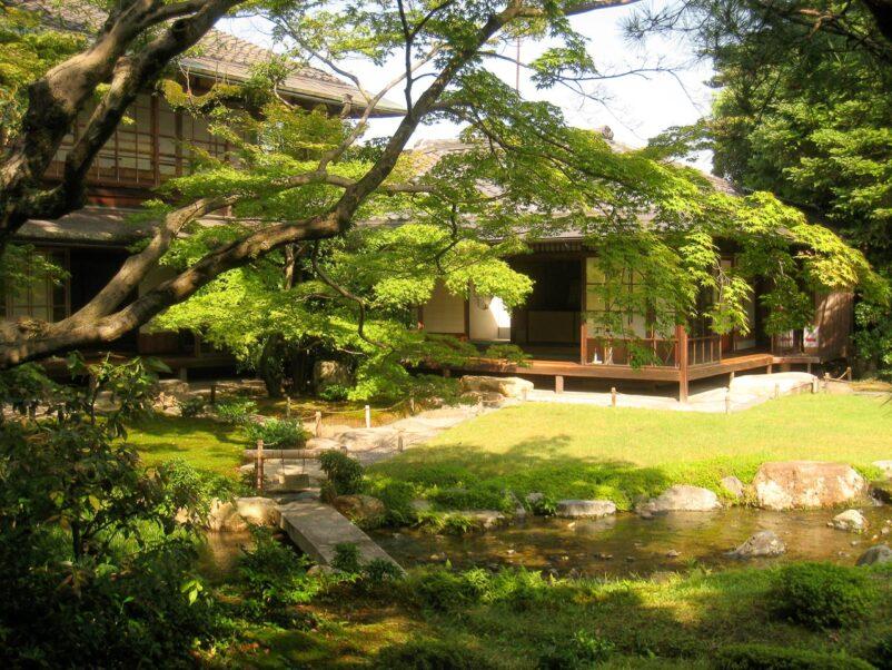 Vườn trà - Nơi dành cho du khách thưởng thức trà đạo truyền thống Nhật Bản