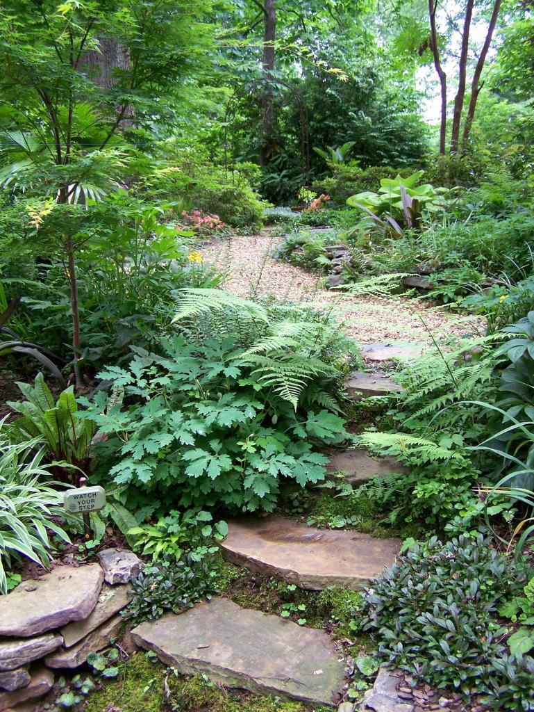 bố trí quá nhiều cây cảnh trong sân vườn