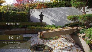 Nguyên Tắc Bố Trí Cây Cảnh Trong Sân Vườn