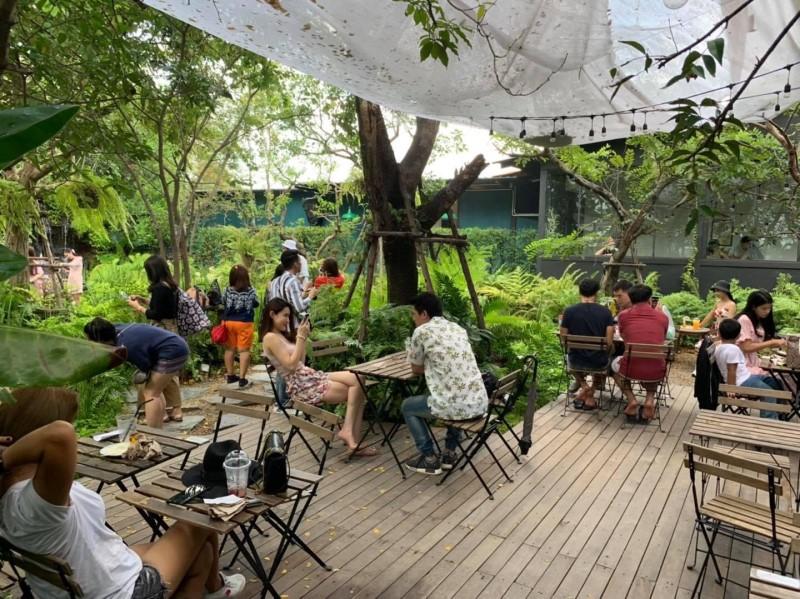 quán cafe sân vườn phong cách tropical