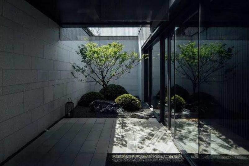 Mẫu sân vườn sau nhà đẹp ấn tượng