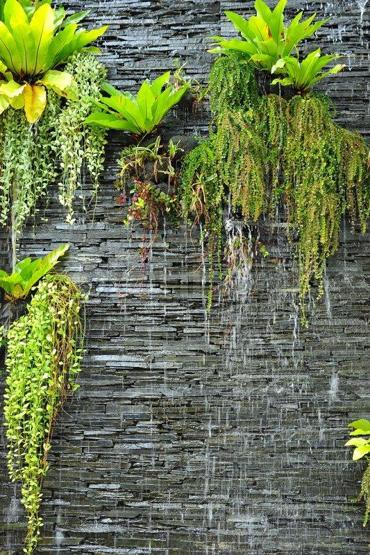 Mẫu tiểu cảnh thác nước tường đơn giản mà sang trọng