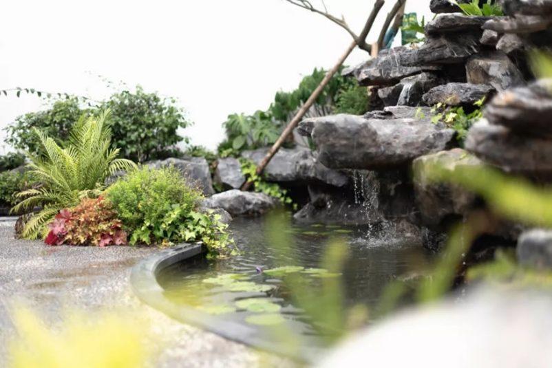 Tiểu cảnh thác nước hồ cá đẹp ấn tượng