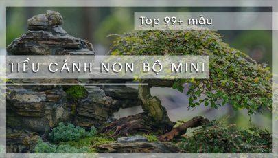 TOP 99 mẫu tiểu cảnh hòn non bộ thác nước mini