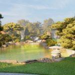Các loại cỏ cảnh trồng sân vườn đẹp