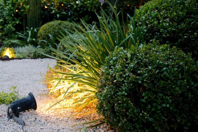 Đèn chiếu cây hay còn gọi là đèn hắt cây có thể áp dụng cho cả cây lớn và cây bụi. Ở cây lớn, đèn hắt sẽ tạo hiệu ứng điểm nhấn cục bộ, còn ở cây bụi nhỏ sẽ tạo hiệu ứng ánh sáng thú vị