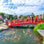 Kinh nghiệm cách tham quan Hồ cá Koi RinRin Park Hóc Môn, Công viên Đá Nhật Bản